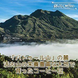バリ神山ハニー バトゥール山
