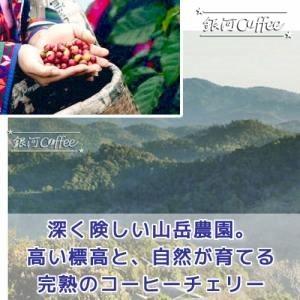 ブルームーン 収穫農園のイメージ