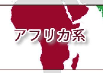 アフリカ系のコーヒー豆の味