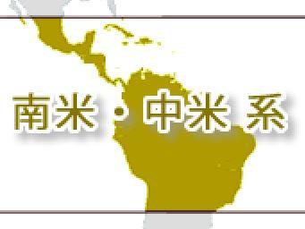 中南米のコーヒー豆の味